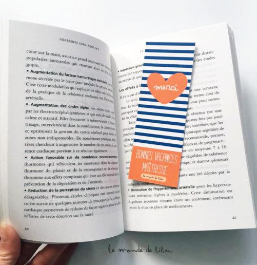 Kit souvenir Maîtresse