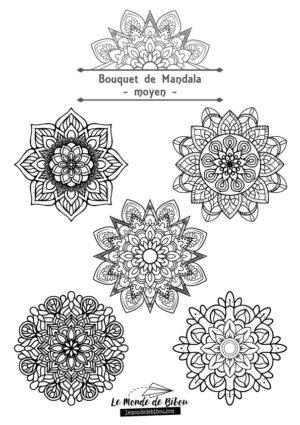 DiY Coloriages Bouquets de Mandalas